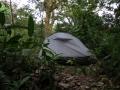 Палатка в тропическом лесу